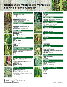 Suggested Vegetable Varieties for the Home Garden