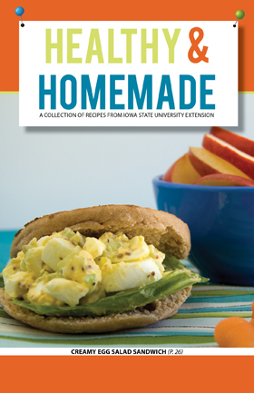 Healthy and Homemade cookbook