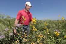 Tim Youngquist in prairie planting
