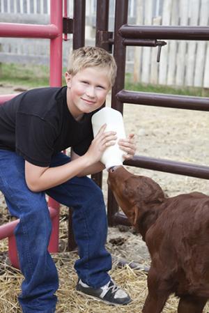 4-H bottle feeding program