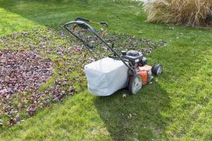 bagging leaves while mowing
