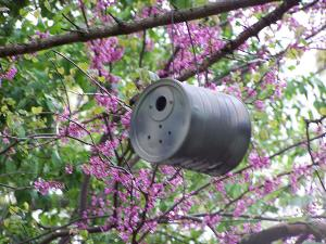 photo of a coffee can wren house