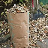 bagged leaves for compost