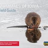 mammals of Iowa guide