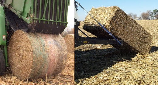 Stover Harvest Bales