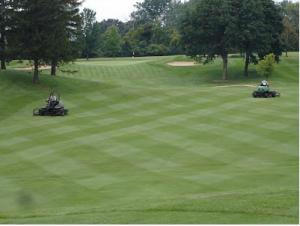 To Stripe Or Not Fairway Mowing Patterns Turfgrass