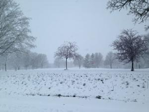 Indian Creek Golf Course Winter