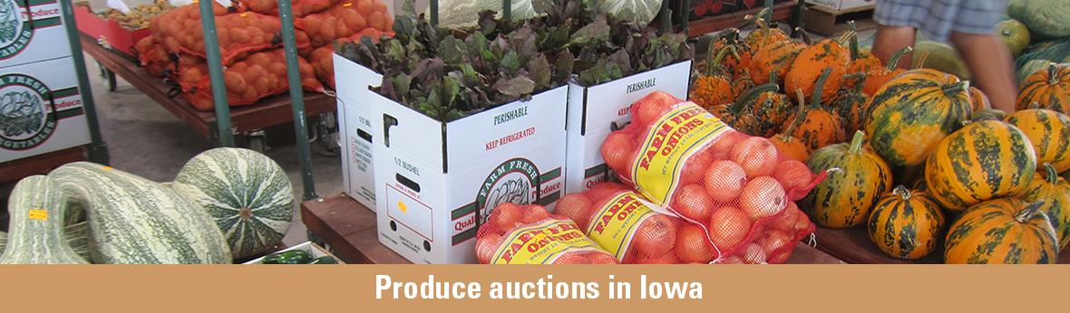 Produce auctions in Iowa