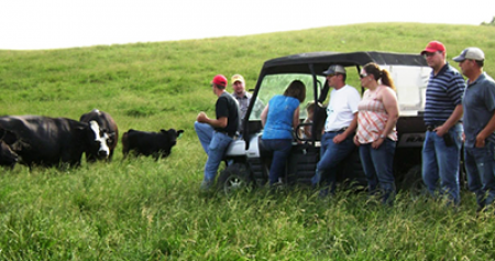 Livestock Producers in field