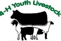4-H and Youth Livestock