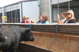 Women touring a cattle ranch at the 2017 Iowa Women in Agriculture Conference - pre-conference tour