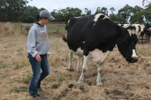 Lisa McKay and Fairvale Morty Lady 51 (Holstein) of Lindsand-V Farm in Australia.